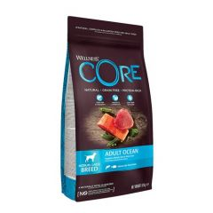 Wellness Core Ocean