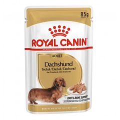 Royal Canin Dog Dachshund-Teckel Adult (Sobres) 85 gr x 12